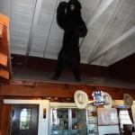 Black Bear greeter, Olancha